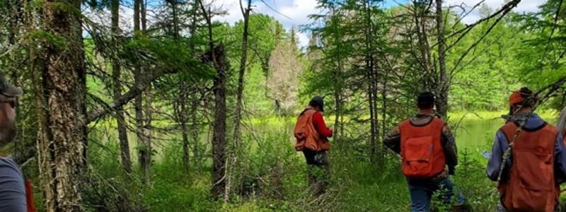 People wearing blaze orange cruiser vests in a forest next to water looking at trees