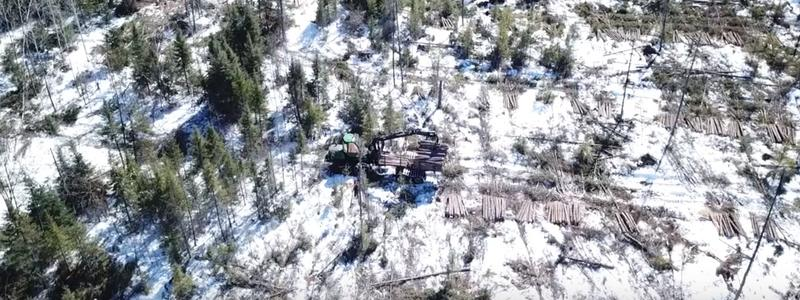 image of winter timber harvest from drone