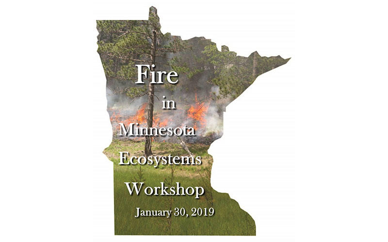 Fire in Minnesota Ecosystems logo