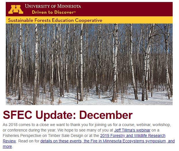 SFEC December Update Thumbnail