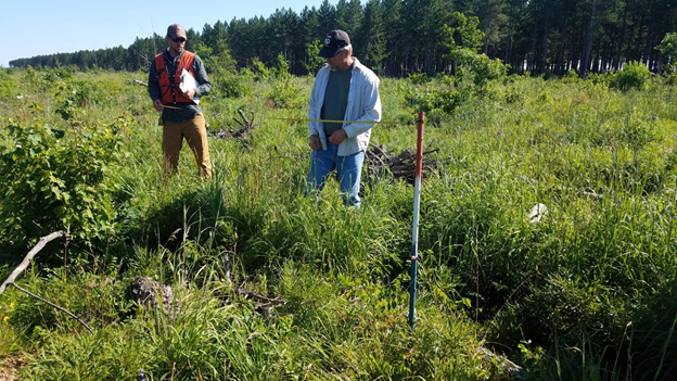 forester collecting data for the BBMA herbicide monitoring case study