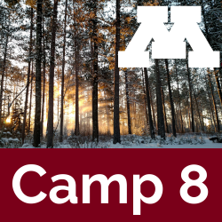 Camp 8 icon showing winter sunrise through CFC pine trees