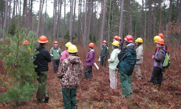 climate-informed forest management