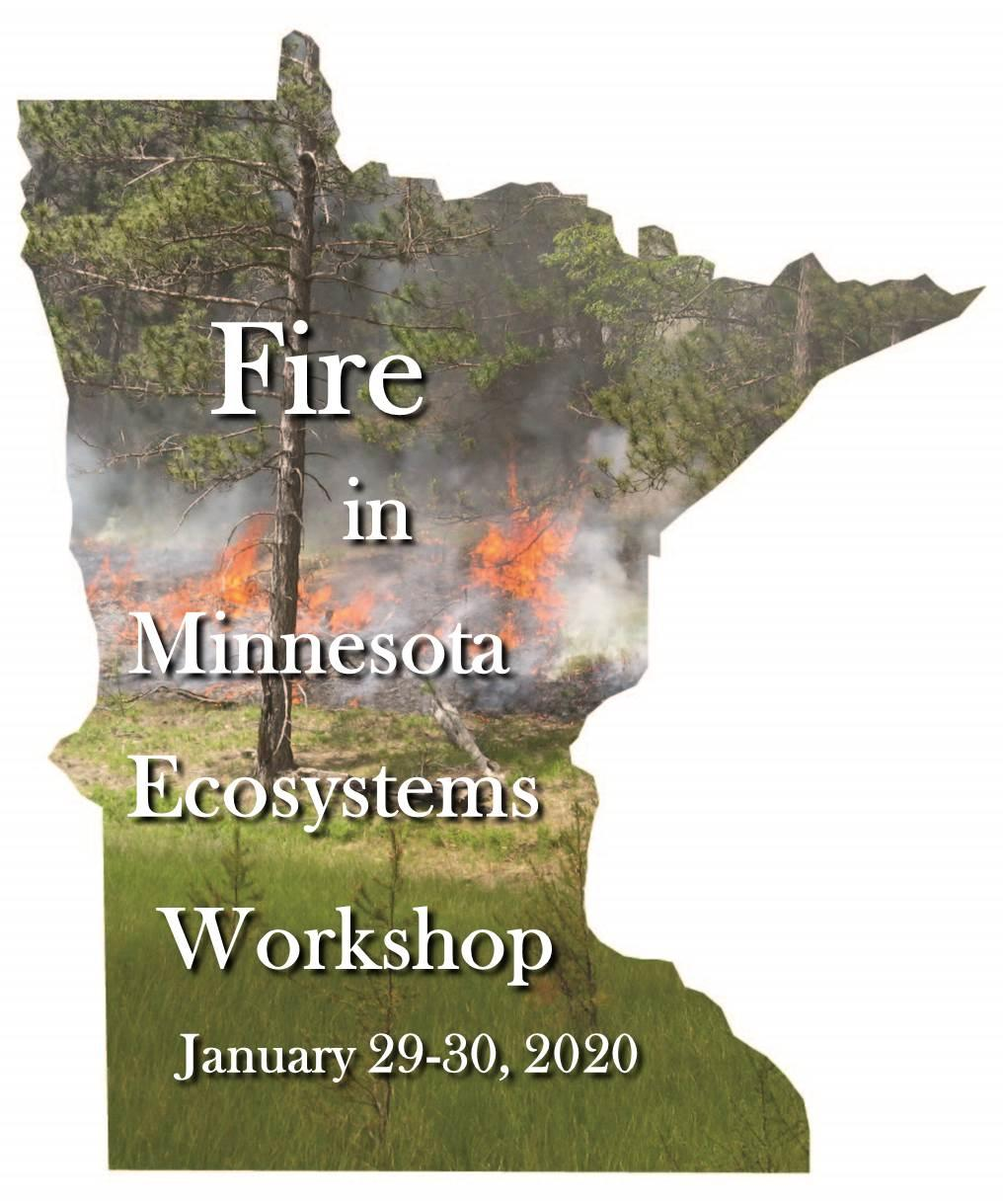 Fire in MN Ecosystems graphic - MN state boundary with forest background