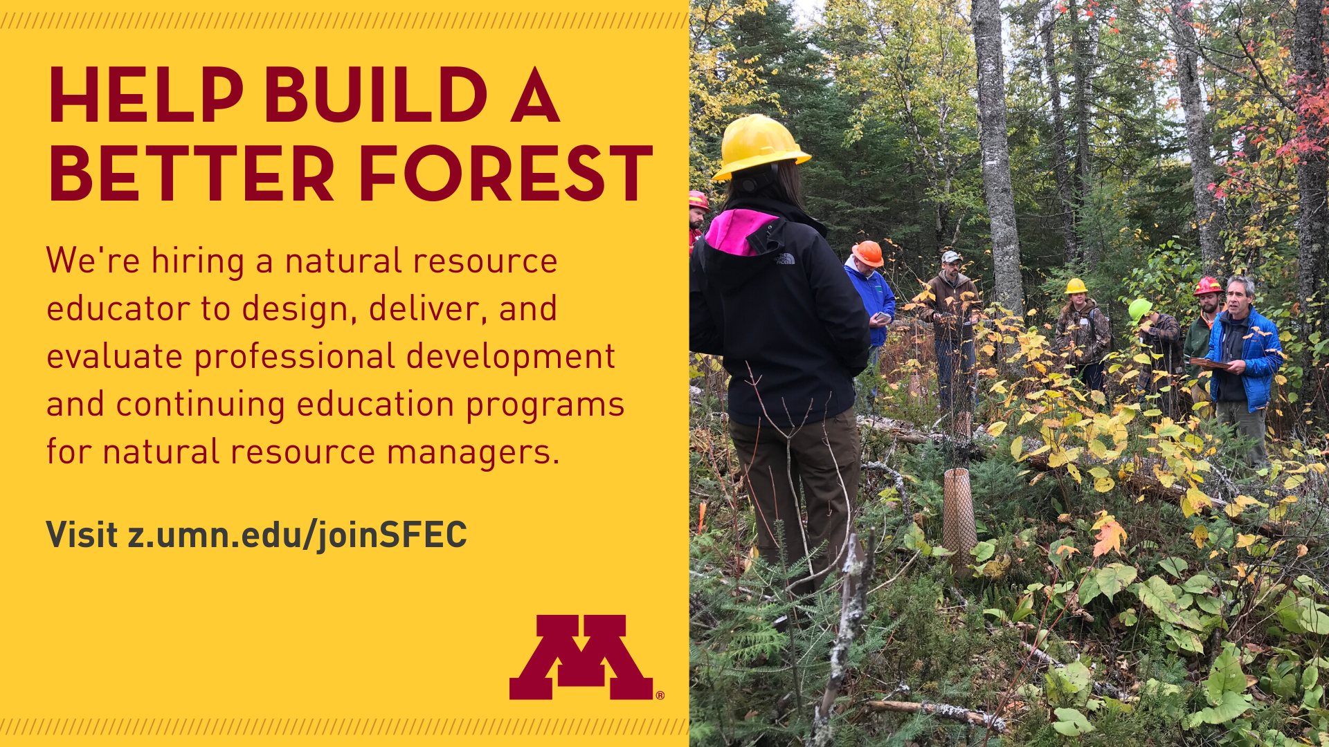 SFEC is hiring text and image of group in northern MN forest