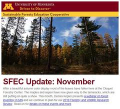 SFEC November Update thumbnail