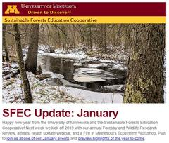 SFEC January 2019 Update Thumbnail