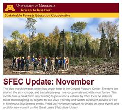 Cover image of SFEC November 2019 Update