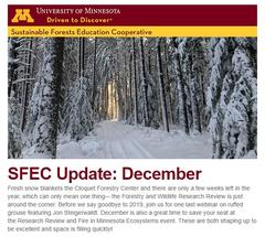 SFEC December update cover thumbnail