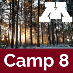 Camp 8 icon: Winter sunrise through CFC pine stand