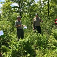 DNR wildlife specialist Dave Ingebrigtsen and forester Jason Bushmaker discuss sale design and wildlife habitat at our first stop.