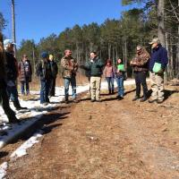 Discussing tradeoffs in seed tree silviculture