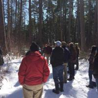 CFC forest manager Kyle Gill discusses the Camp 8 old growth stand