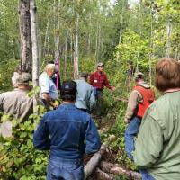 Lake County forester Bill Nixon discusses aspen decline north of Two Harbors