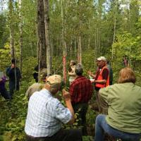 Matt Russell discusses aspen decline north of Two Harbors