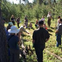 Discussing soils at a low-nutrient jack pine dominated site