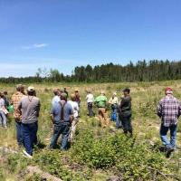 Touring the biomass harvest research site