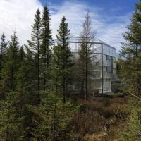 A SPRUCE project chamber