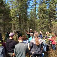 Examining and discussing peatland soils