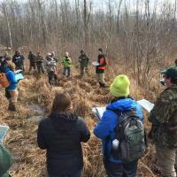 Dan Hanson at the black ash silviculture site